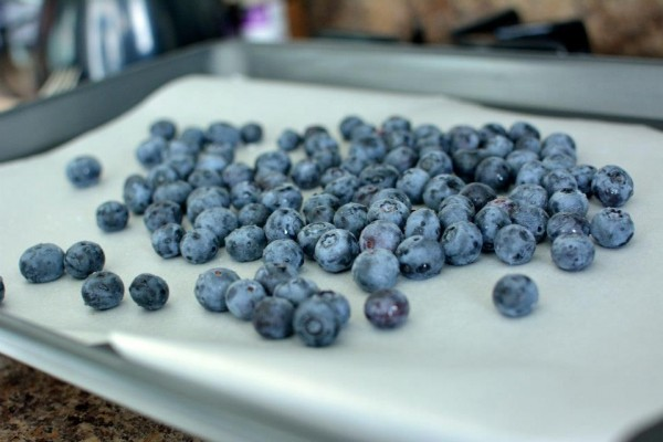 Blueberries Before